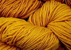 BFL superwash wool dyed with Persian Berry (or Buckthorn) natural dye extract | Wild Colours natural dyes