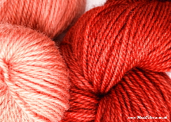 BFL superwash wool dyed with madder natural dye extract | Wild Colours natural dyes