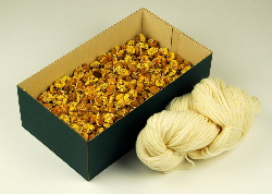 Dyers's Chamomile flowers 200 gm with 100 gm of Blue-faced Leicester wool