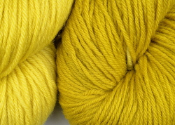 BFL superwash wool dyed with greenweed natural dye extract | Wild Colours natural dyes