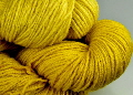weld natural dye extract | Wild Colours natural dyes