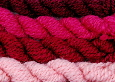 Dyeing with the natural dye Cochineal - Dactylopius coccus