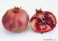 pomegranate fruit | Wild Colours natural dyes